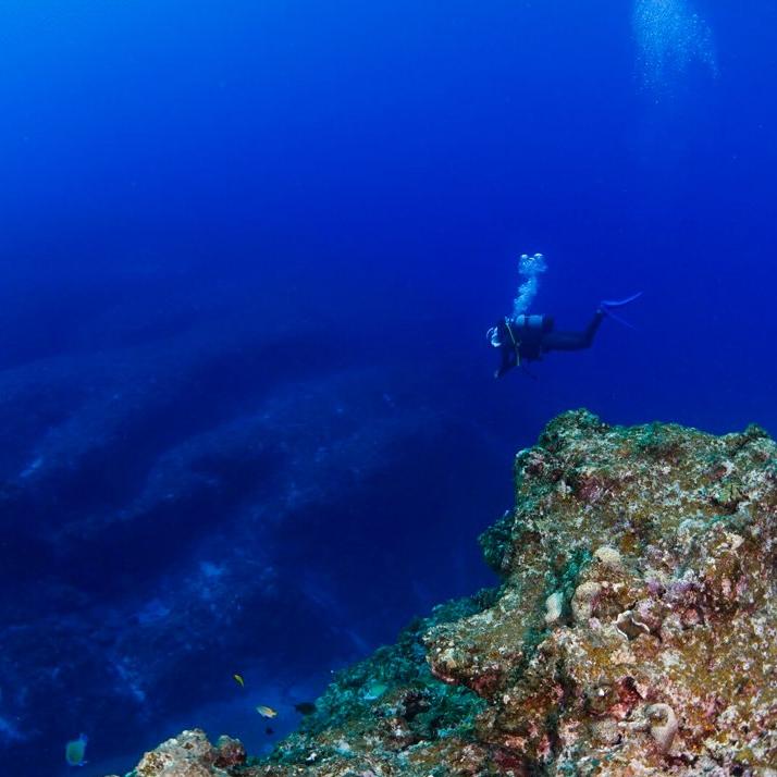 은하수가 아름다운 미야코 섬 4박 5일 보트 펀다이빙 투어 팩