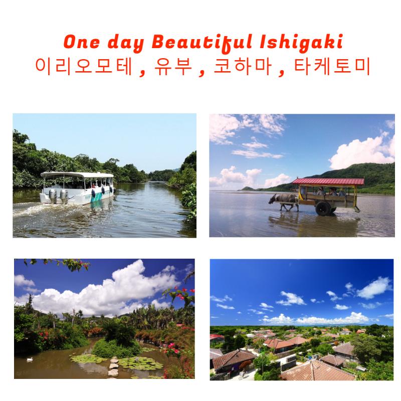 [R-1] 떠나보자 이시가키 4개 섬 돌아보기 관광(점심포함)