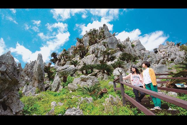 [C course:从那霸出发,周三/周五/周日运行] 冲绳美丽海水族馆+边户岬+大石林山的自然之旅