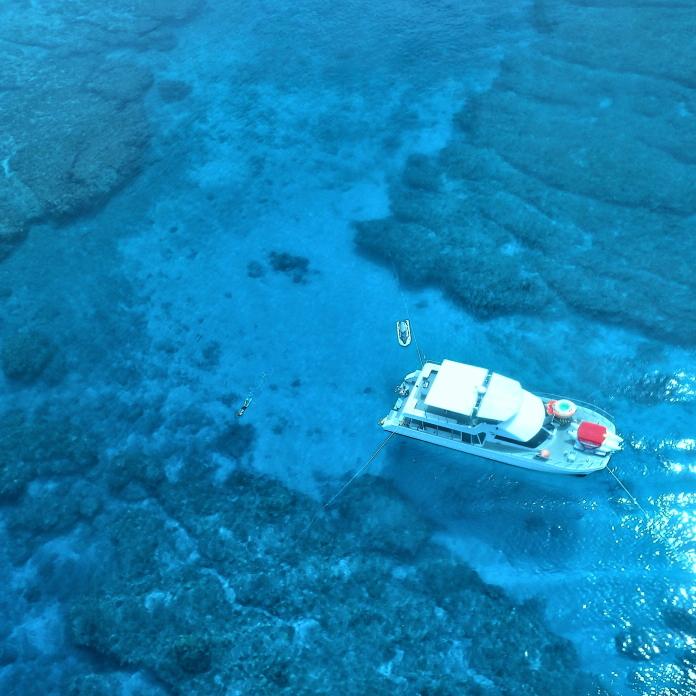 [4월 13일부터 스타트!!] C 플랜 케라마제도 대형 산호초 스노클링&마린 2팩