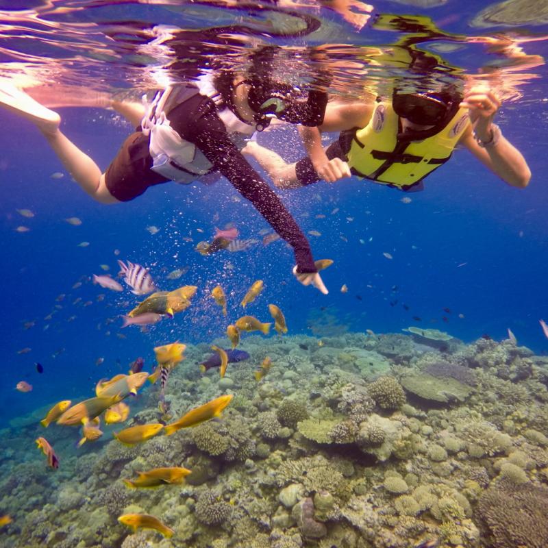 오키나와 북부 민나섬 가즈아!! 민나섬에서 즐기는 두근두근 보트 스노쿨링 & 당일치기 해수욕!! (점심포함)