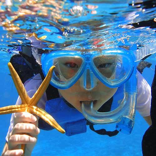 【13:00 출발 / 12:20 집합】오키나와 북부 민나섬 가즈아!! 민나섬에서 즐기는 두근두근 보트 스노쿨링 & 당일치기 해수욕!!