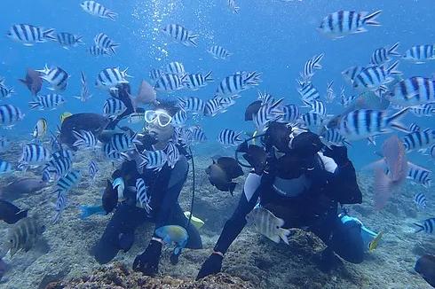 【青洞】  体验潜水![10岁~59岁]
