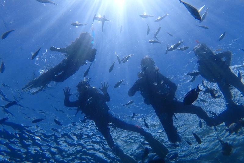 【青洞】  FUN专业潜水行程![10岁~59岁]