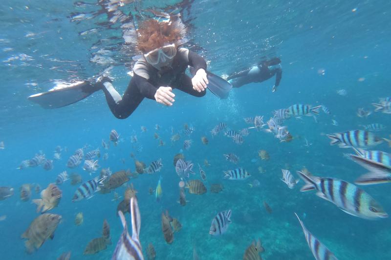 【青洞】浮潜行程  ![3岁~59岁]
