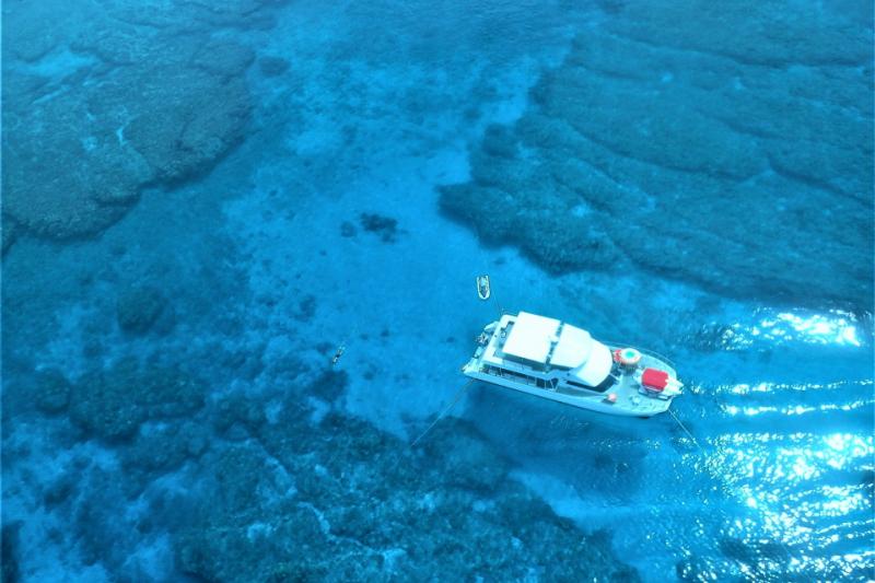 C 플랜 케라마제도 대형 산호초 스노클링&마린 2팩