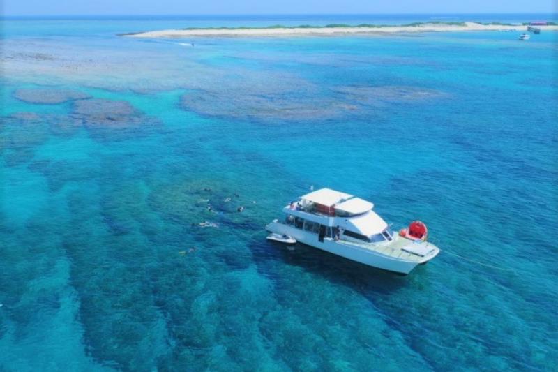 【慶良間諸島】Bプラン 大サンゴ礁シュノーケリング(餌付け体験付き)&マリン1品