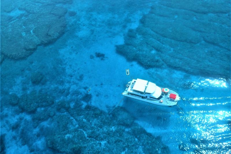 【慶良間諸島】Cプラン 大サンゴ礁シュノーケリング(餌付け体験付き)&マリン2品
