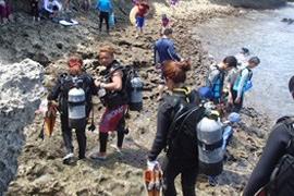 【青の洞窟】体験ダイビングビーチエントリ