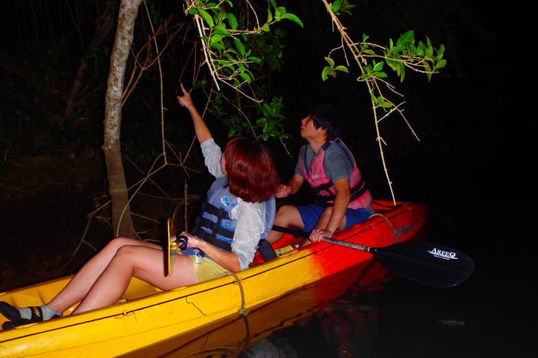 오키나와의 조용한 밤 히자강에서 즐기는 나이트 카약 투어