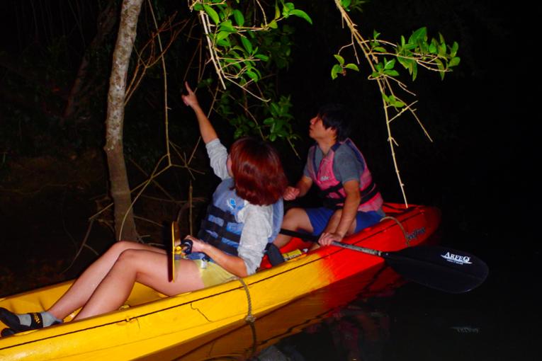 另類大冒險!夜間獨木舟行程