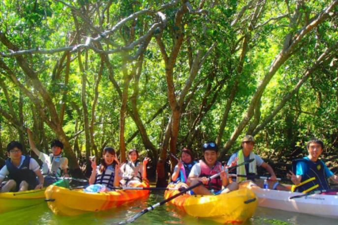 冲绳红树林独木舟行程!